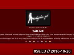 Miniaturka domeny www.hotlejdis.pl