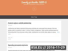 Miniaturka Blog o sportach jeździeckich (hpp-a.pl)
