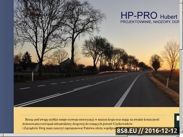 Zrzut strony HP-Pro - drogi