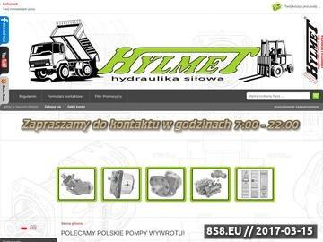 Zrzut strony Producent pomp hydraulicznych