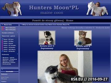 Zrzut strony Maine Coon hodowla HuntersMoonPL