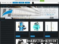Miniaturka domeny hurtowniapomp.pl