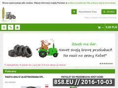 Miniaturka domeny hurtowniarolnicza.pl