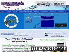 Miniaturka domeny hydraulik-krk.pl