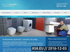 Miniaturka domeny www.hydraulik-poznan.pl