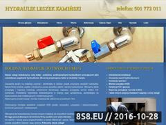 Miniaturka domeny hydraulik.gdansk.pl