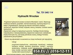 Miniaturka domeny www.hydraulikelektryk.pl