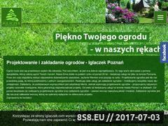 Miniaturka domeny www.iglaczek.com