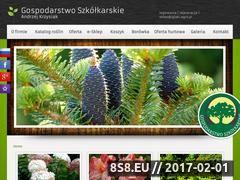 Miniaturka domeny iglaki.agro.pl