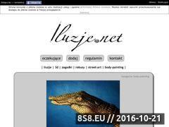 Miniaturka domeny iluzje.net