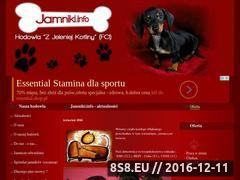 Miniaturka domeny www.jamniki.info
