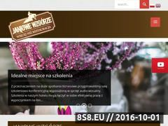 Miniaturka domeny www.janiowewzgorze.pl