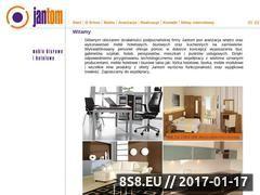 Miniaturka domeny www.jantom.com.pl