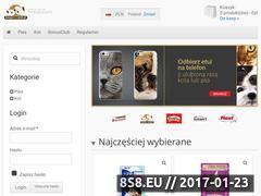 Miniaturka domeny kacper-i-latek.pl