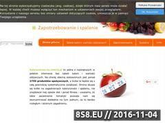 Miniaturka domeny www.kalorycznosc.eu.interia.pl
