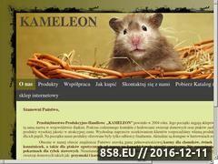 Miniaturka domeny kameleonpokarmy.pl