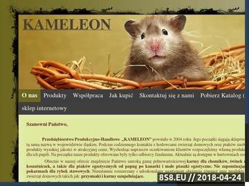 Zrzut strony Produkcja pokarmów dla zwierząt - Kameleon