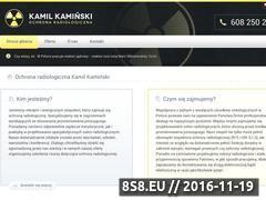 Miniaturka domeny www.kaminskior.pl