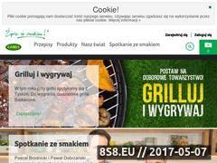 Miniaturka domeny www.kamis.pl