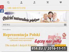 Miniaturka domeny www.kamkryst.pl