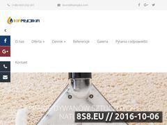 Miniaturka domeny www.kamyjka.com