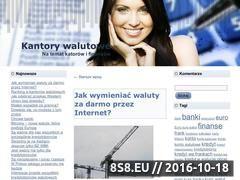 Miniaturka domeny www.kantorywalutowe.pl