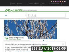 Miniaturka domeny www.kapias.pl