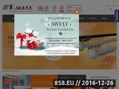 Miniaturka domeny www.karpol.pl