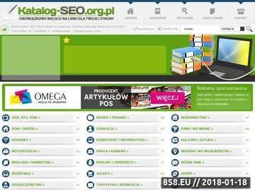 Zrzut strony Katalog seo najlepsze strony internetu.