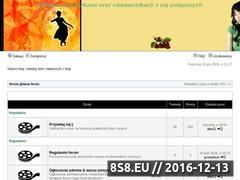 Miniaturka domeny www.kino-azja.pl