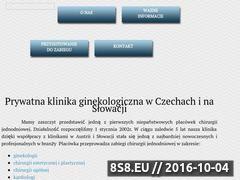 Miniaturka domeny klinika-ginekologiczna.com