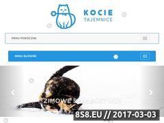 Miniaturka domeny kocietajemnice.pl