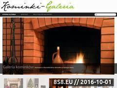 Miniaturka domeny kominki-galeria.net