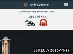 Miniaturka domeny www.kominyisystemykominowe.pl