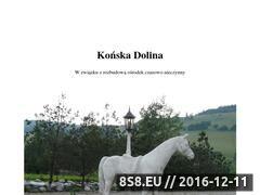 Miniaturka domeny www.konskadolina.pl