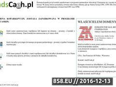 Miniaturka domeny koparki.pvt.pl