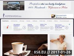 Miniaturka domeny kopenhaska.eu