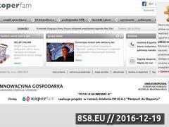 Miniaturka domeny www.koperfam.pl