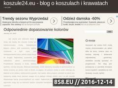 Miniaturka domeny www.koszule24.eu