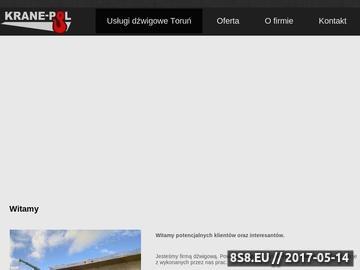 Zrzut strony KRANE-POL dźwigi