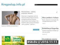 Miniaturka domeny www.kregoslup.info.pl