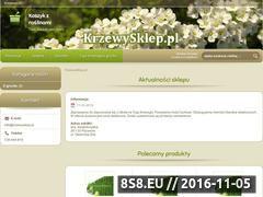 Miniaturka domeny krzewysklep.pl