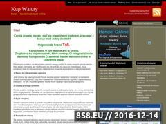 Miniaturka domeny www.kupwaluty.com