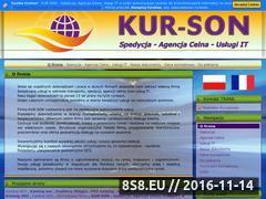 Miniaturka domeny www.kur-son.pl