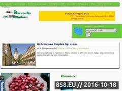 Miniaturka domeny kuracjusz24.pl