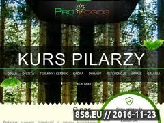 Miniaturka domeny kurspilarzy.pl