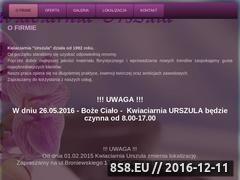 Miniaturka domeny www.kwiaciarnia-ciechocinek.pl