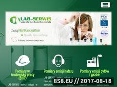 Miniaturka domeny www.lab-serwis.com.pl