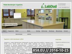 Miniaturka domeny www.labdud.pl