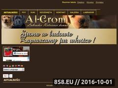Miniaturka domeny labrador-algrom.pl